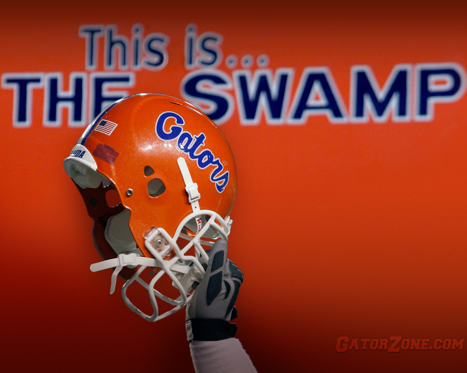 The Swamp Photo