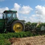 Farm Day 2017 – February 1
