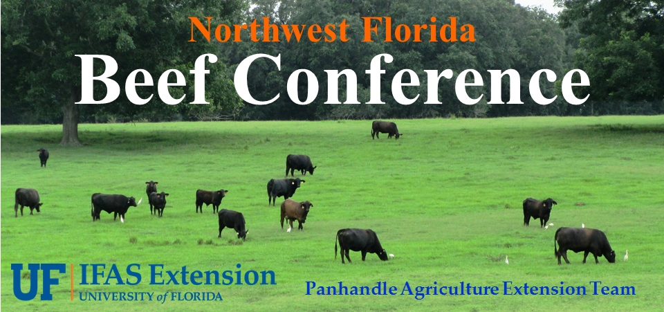 Beef Conference Graphic (960x451)