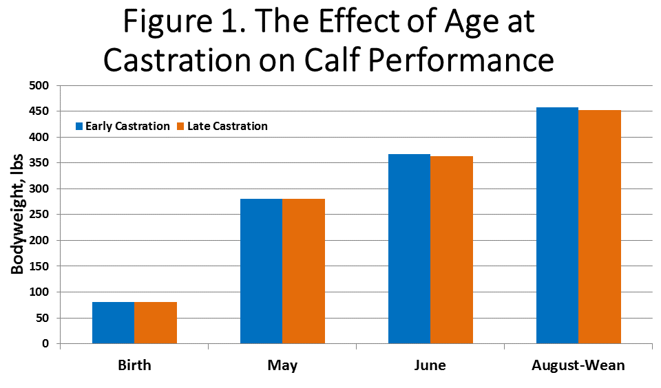 Age at Castration Performance Chart