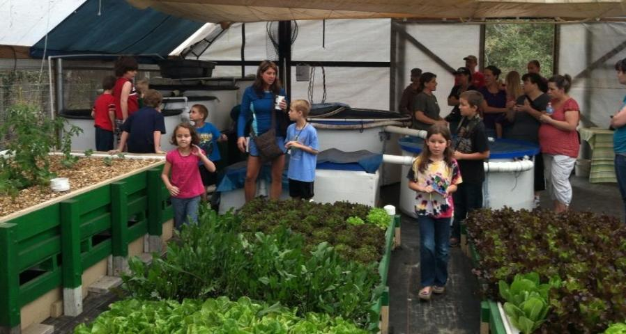 Hops and Aquaponics Workshops – November 1 & 2
