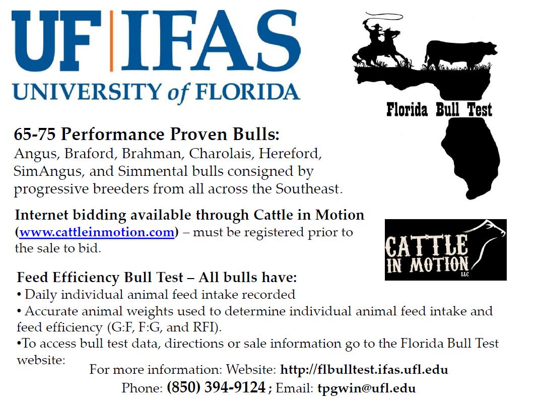 15 FL Bull Test Sale Information