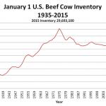 US Beef Cow Herd Increased 2% in 2014