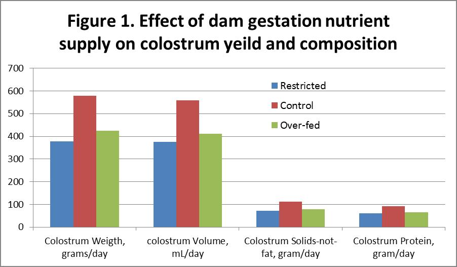 Effect of a dam's nutrition during gestation on colostrum yield and composition.