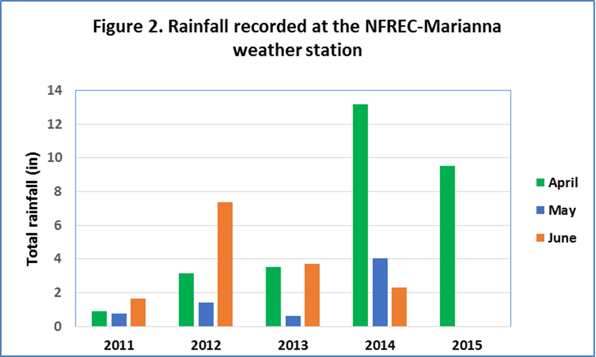 Figure 2.  Rainfall patterns in the last four years using data from the NFREC-Marianna weather station.