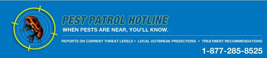 Pest Patrol Hotline Header