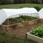 Low Tunnels Provide Year-Round Gardening Versatility