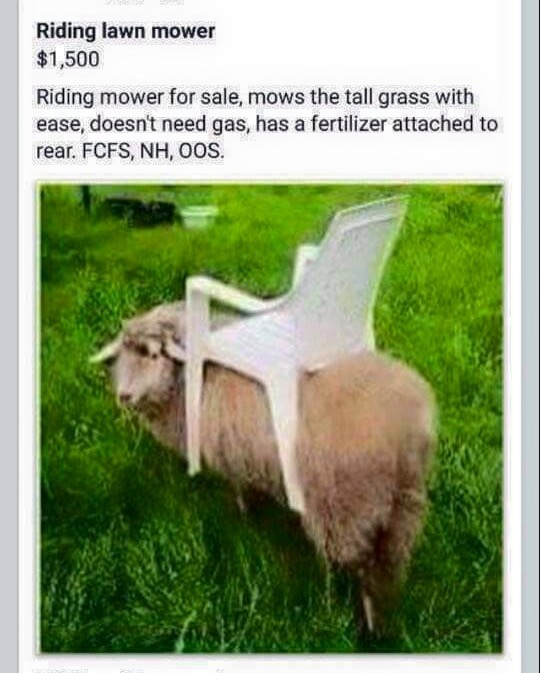 Biofuel Riding Lawnmower