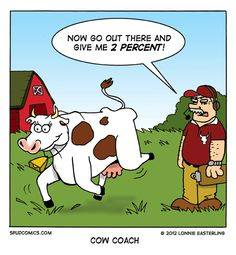 Coaching for Cows