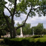 Friday Funny:  Gathering Pecans in the Cemetery