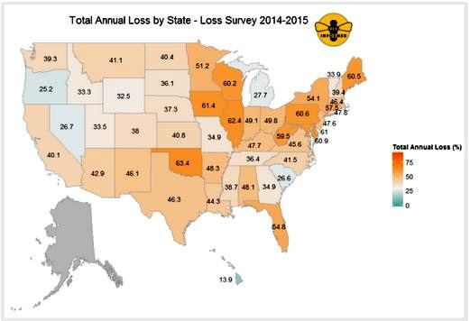 Figure 2: Total annual loss (%) 2014-2015 by state. Respondents who managed colonies in more than one state had all of their colonies counted in each state in which they reported managing colonies. Data for states with fewer than five respondents are withheld.
