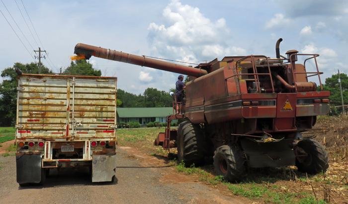 jackson Corn Truck Fill