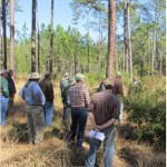 Florida's Forest Stewardship: Integrate Wildlife and Forestry Workshop October 15