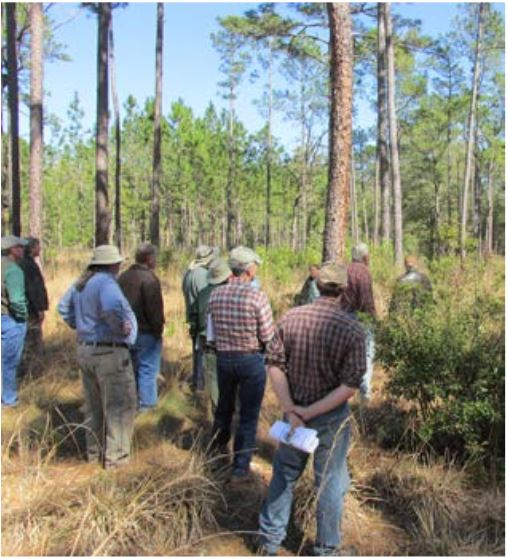 Integrating Forestry & Wildlife Tour