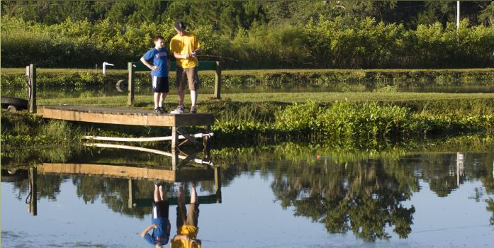 Recreational fish pond management workshop november 3 for Garden pond management