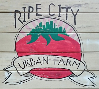 Ripe City Farm Sign