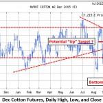 Cotton Marketing News:  A Rocky Road