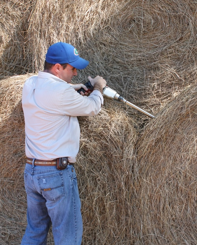 Collecting samples and having an analysis performed on your hay will let you know the nutrient content. Knowing the nutrient content allows you to calculate what f any additional supplementation is required. Photo Credit: James Strickland