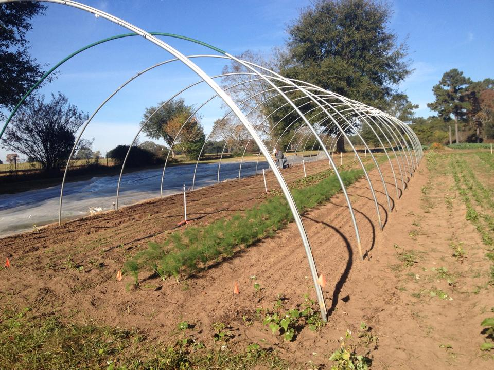 High tunnel frame, prior to adding plastic sheeting. Photo by Full Earth Farm.