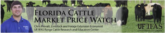 July Florida Cattle Market Price Watch         ………..