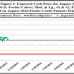 November Florida Cattle Market Price Watch