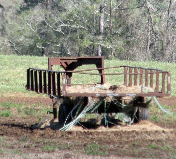 Even if net wrap isn't removed before feeding, using a trailer to keep the hay off the ground helps keep the pasture free of wrap. Photo Credit: Jed Dillard