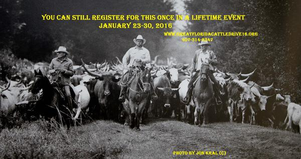 FL Cattle Drive 16 banner