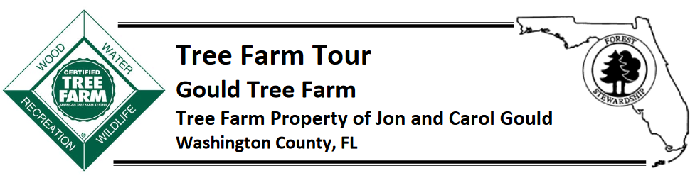 Tree Farm Tour Header