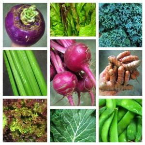 Red Hills Online Market vegetable collage. Photo by Cassie Dillman.