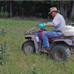 The Cheapest Method to Control Pasture Weeds