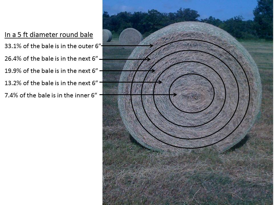 Figure 1. Proportion of bale contained within 5 six-inch section of a Coastal bermudagrass large round bale. (Alachua, FL Photo credit Matt Hersom).