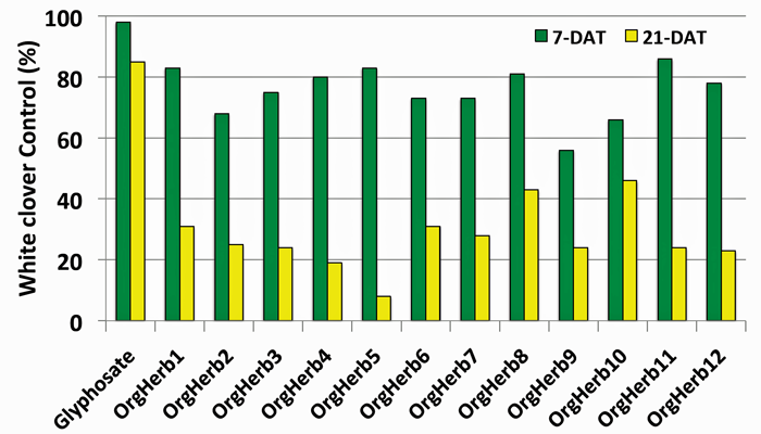 Figure 1. White clover (4 inches tall) control after treatment with glyphosate and twelve different organic herbicides based on natural oil extracts from plants. The green bars represent the level of control 7 days after treatment (DAT) and the yellow bars indicate control 21 DAT.