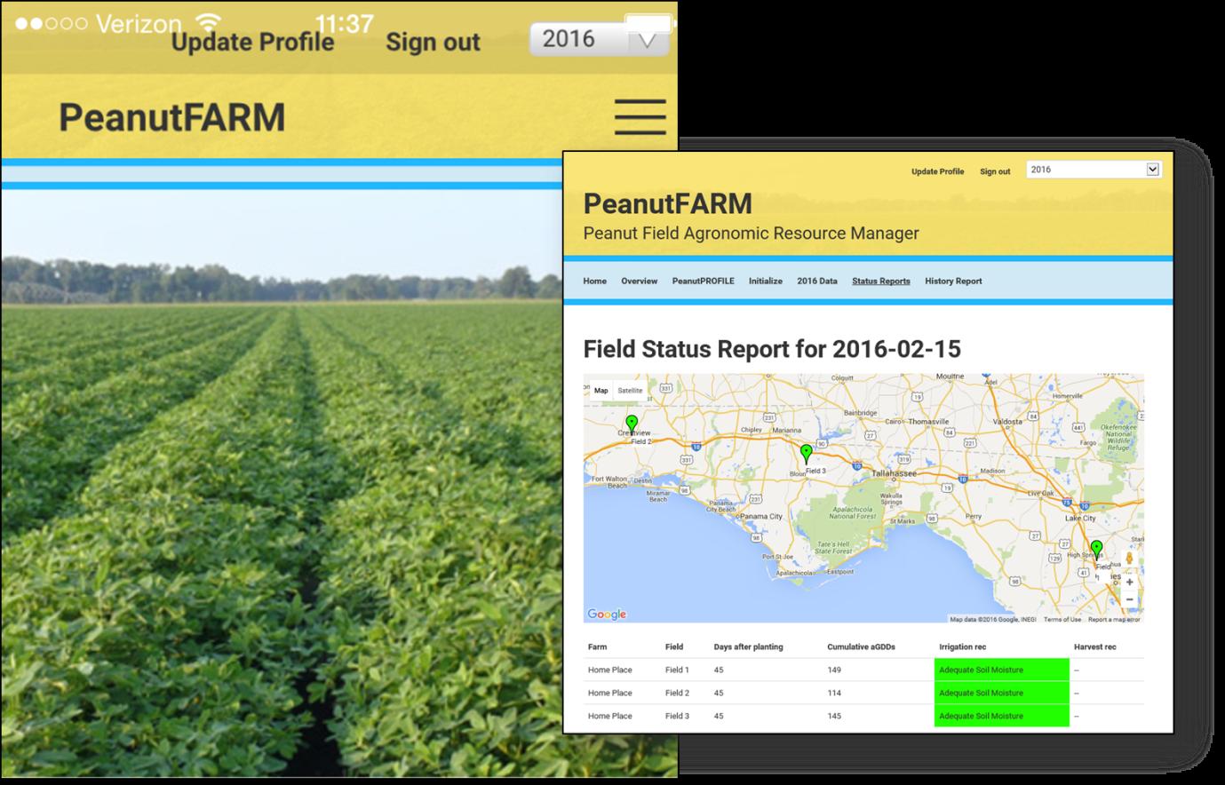 Rowland Peanut FARM Field Status