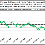 May Florida Cattle Price Watch