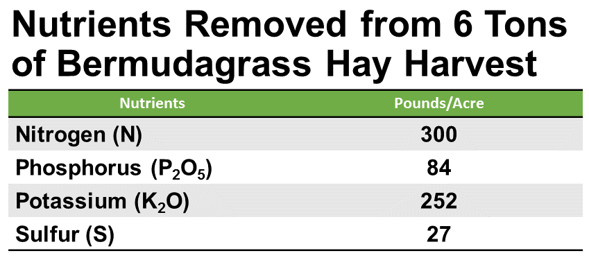 Source: Bermudagrasses in Georgia