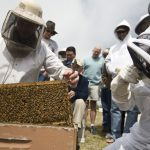 2017 Beekeeping Workshop and Trade Show – April 21 & 22