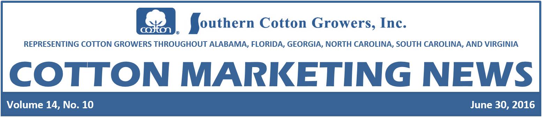 Cootn Marketing News Header 6-30-16