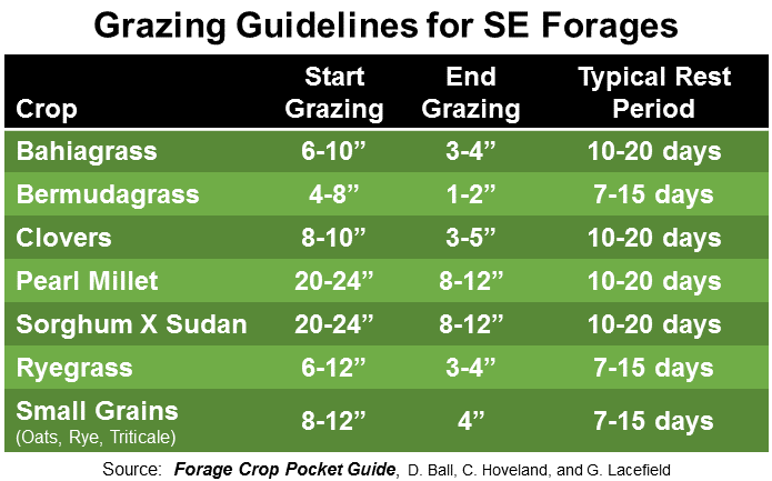 Grazing Guidelines for SE Forages