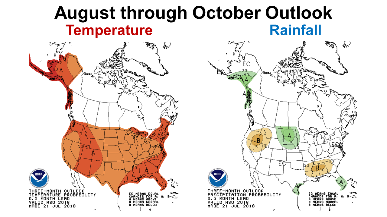 CPC 16 Aug-Oct Outlook