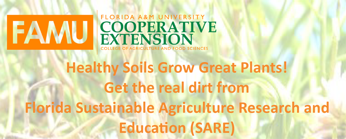 FAMU Soil Workshop Graphic