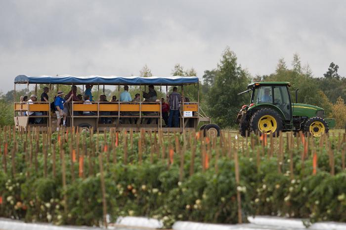 NFREC in Quincy , tractor, tour, trailer, field, farm.
