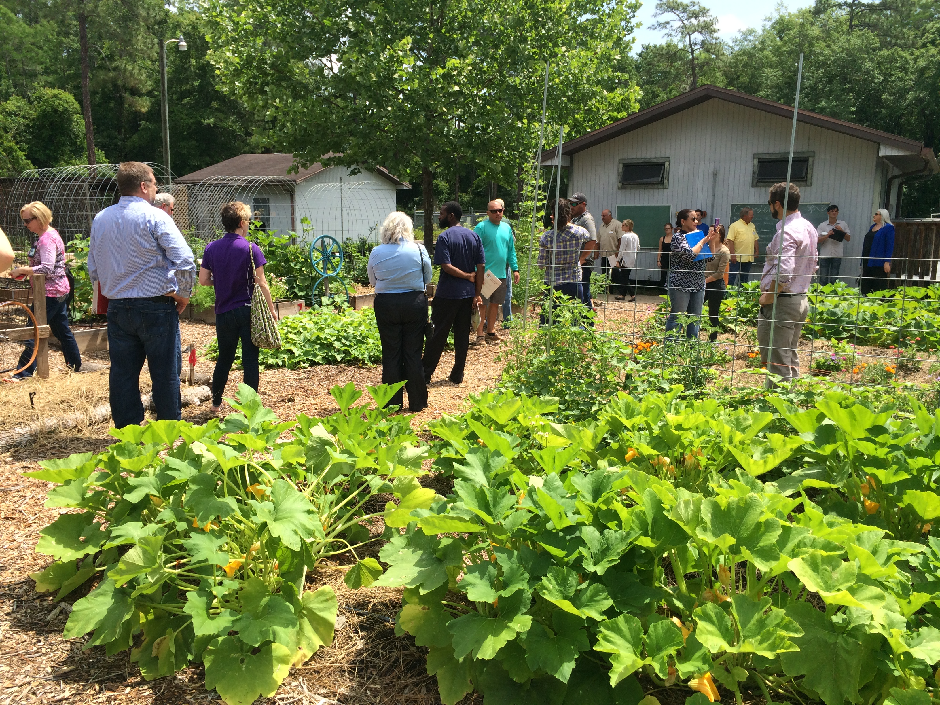 Hosting a farm tour is an excellent way to connect with customers. Photo by Molly Jameson.