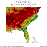 Figure 2. Precipitation (inches) recorded for two weeks after hurricane Hermine.