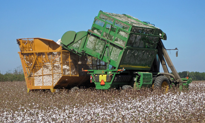 cotton-harvest-equipment