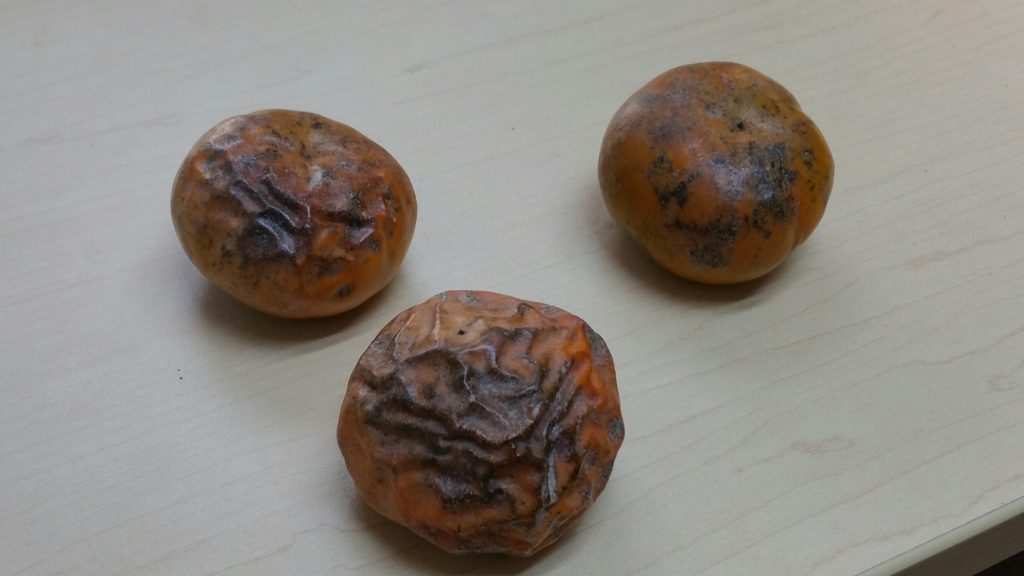 three-persimmons