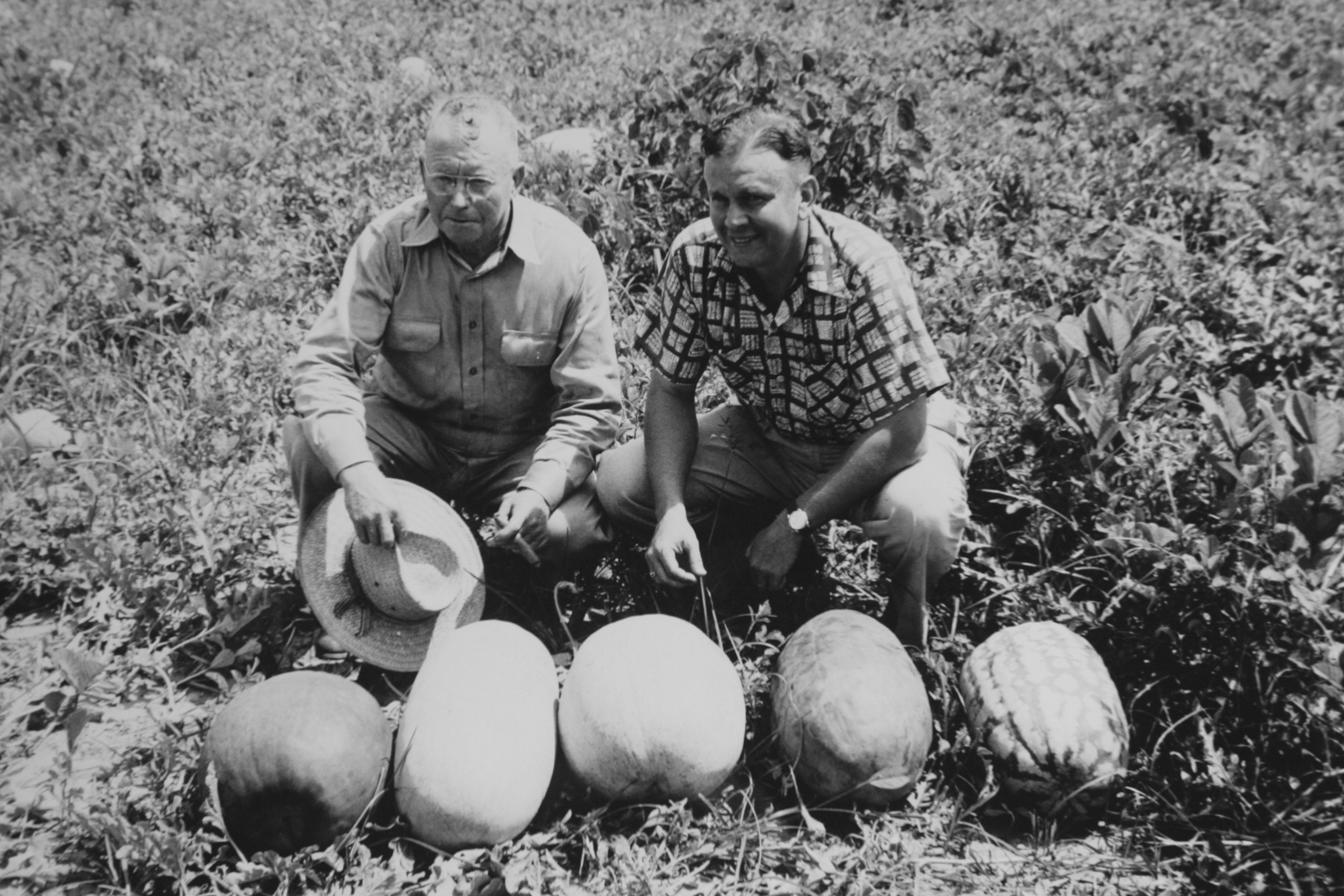 Farmers with prize watermelons. Image from Smathers Archives.