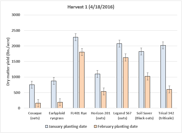 Figure 2. Dry matter yield of cool-season grasses planted in January or February 2016 in North Florida (UF/IFAS NFREC, Marianna, FL). Data from first harvest (4/18/2016).