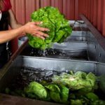 Things You Should Know About Farm Food Safety
