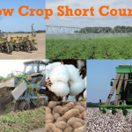2017 Panhandle Row Crop Short Course – March 2
