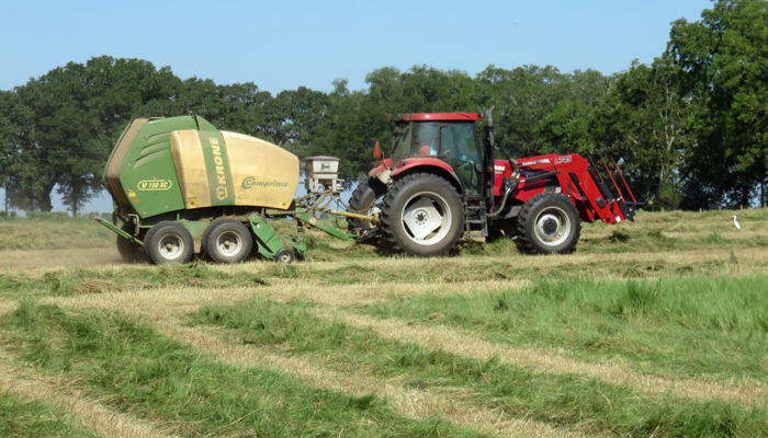 May Cattle & Forage Management Reminders         ……..